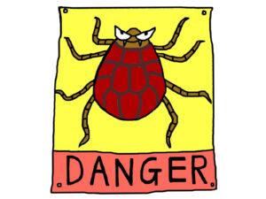 虫刺され 腫れ 痛み 膿,虫刺され 腫れ,虫刺され 痛み 腫れ 膿 痒い 何の虫