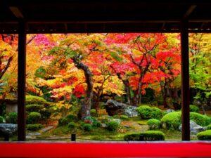 京都 伊勢神宮 行き方