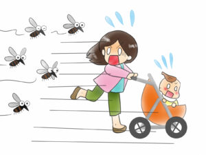 蚊,対策,庭